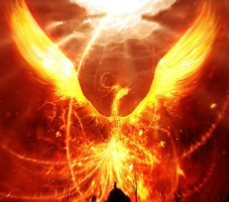 Phoenix_Bird